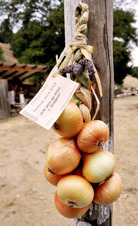 Onion braid for market