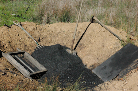 Tree planting site, modified by digging a large pit to 2 feet deep, burning charcoal in it, crushing the charcoal and mixing it in as the pit was re-buried.