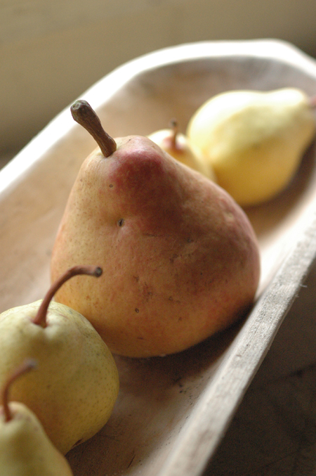 Finally getting some pears. The big red one is Souvenir Du Congres. it was very good. The others are bartletts grafted from an old homestead tree at the top of the driveway. I'm getting some asian pears too and a few winter pears the name of which escapes me just now.